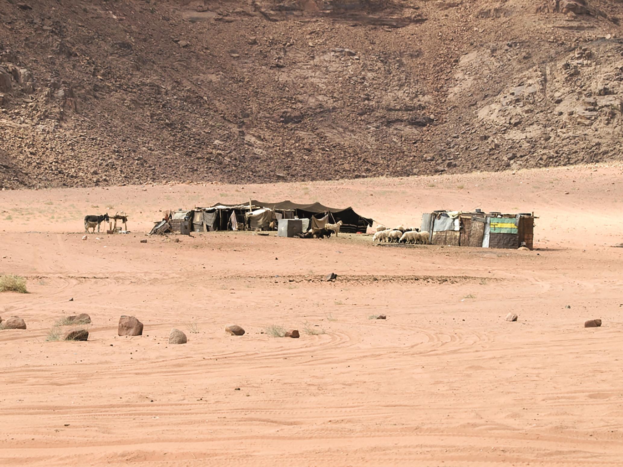 Bedouin tent_SHUTTERSTOCK2.jpg